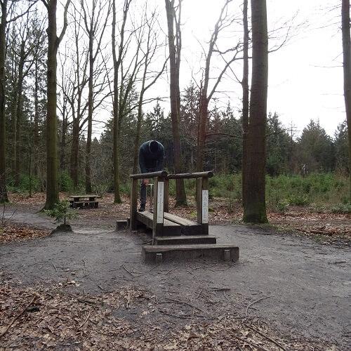 Gerben in the park